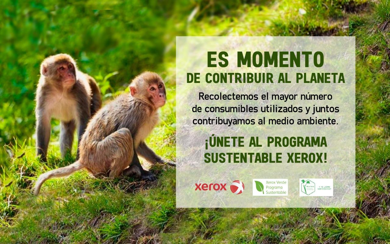 Xerox, programa sustentable.
